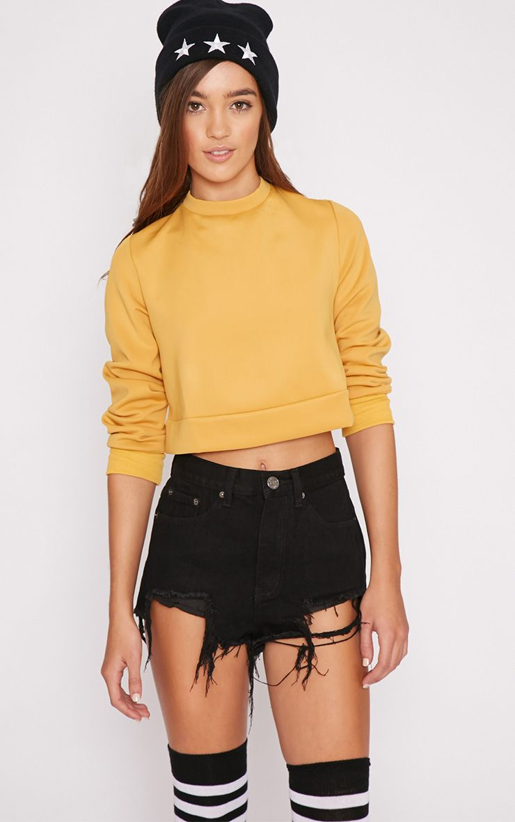 Missie Musard Open Back Cropped Sweater 1