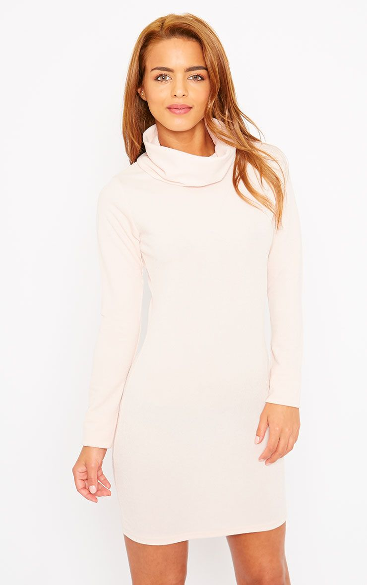 Catrina Nude Roll Neck Dress 1