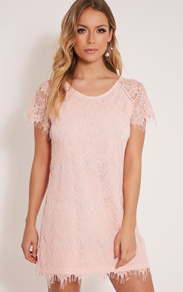 Adara Blush Lace Shift Dress 1