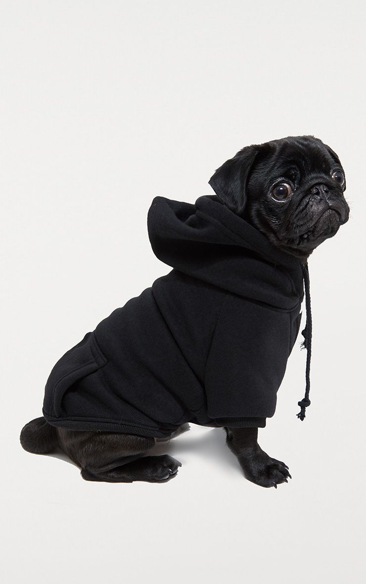 Black Doggy Hoodie