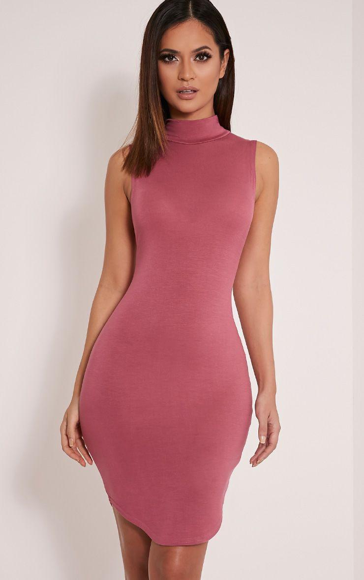 Alby Rose Sleeveless Curve Hem High Neck Dress 1
