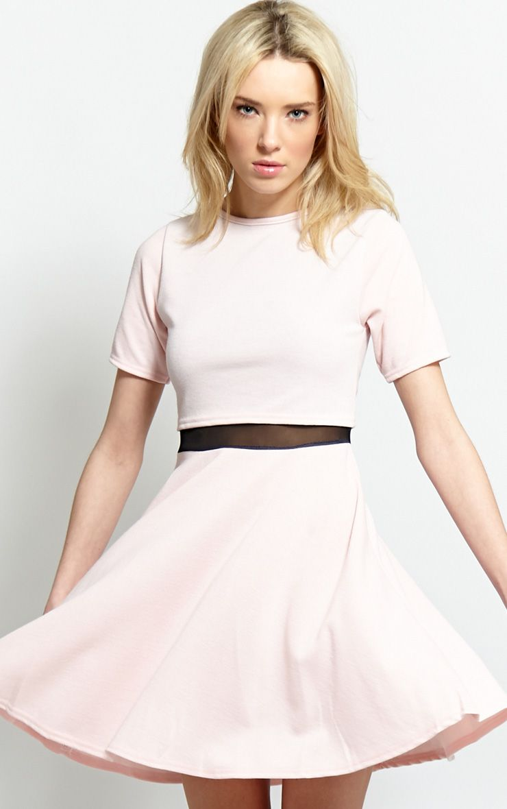 Suzie Pink Mesh Skater Dress 1