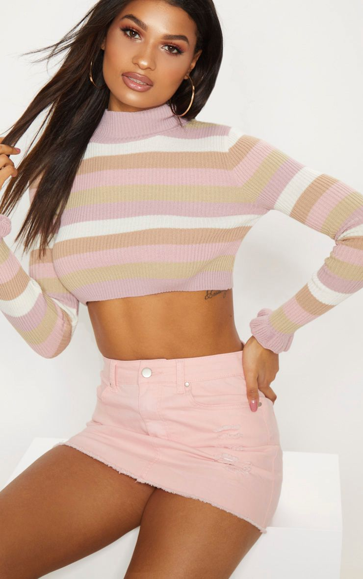 Nude Stripe Ribbed Cropped Jumper