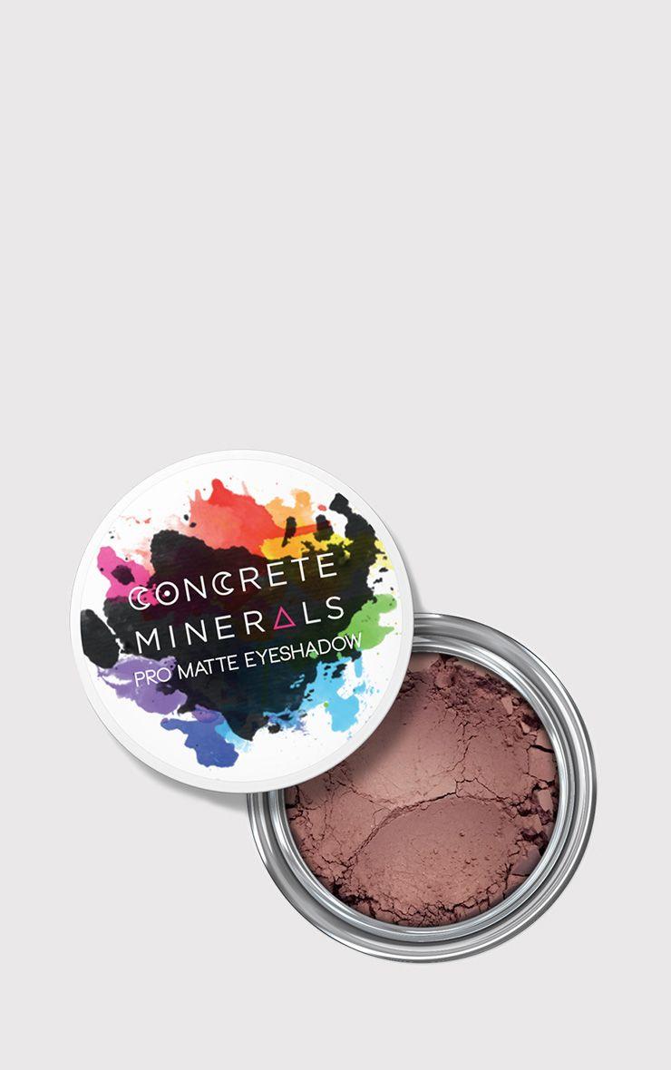Concrete Minerals Bandit Pro Matte Eyeshadow