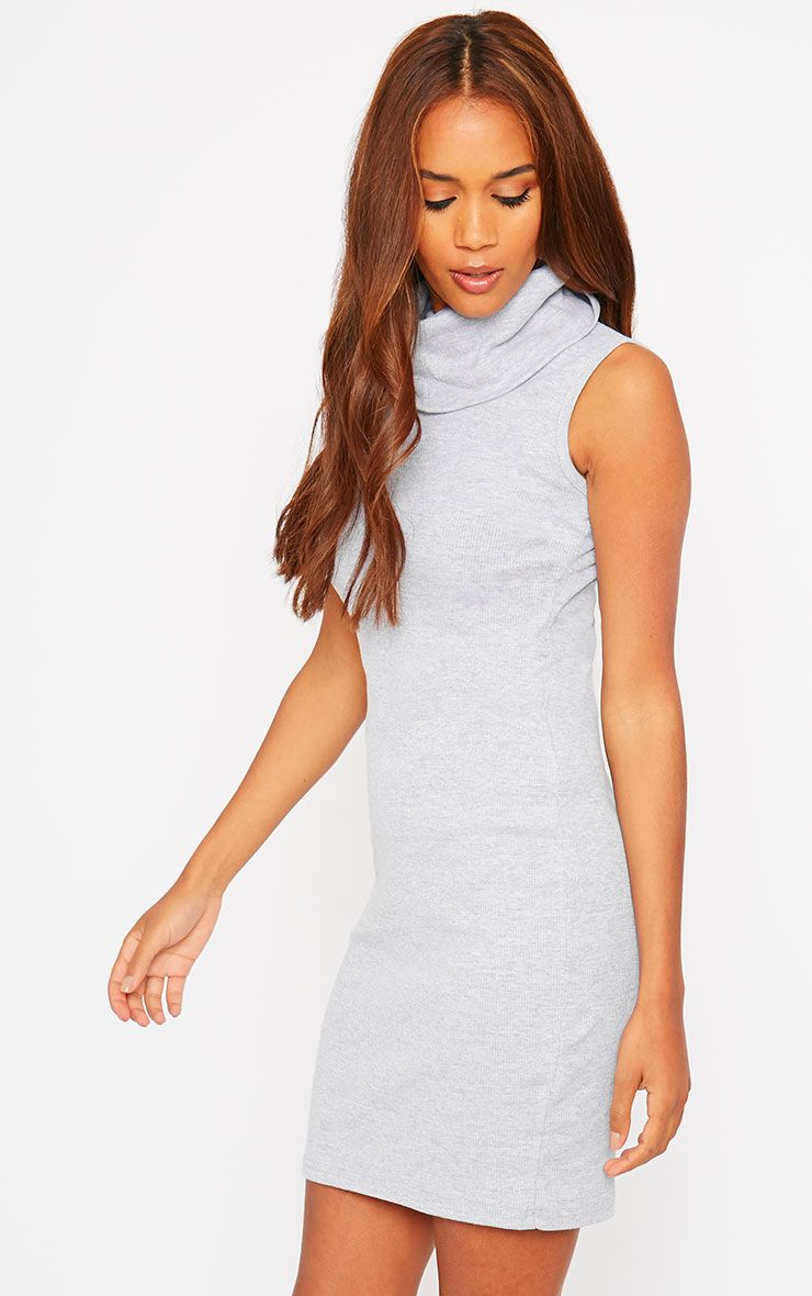 Faybhian Grey Turtle Neck Dress 1