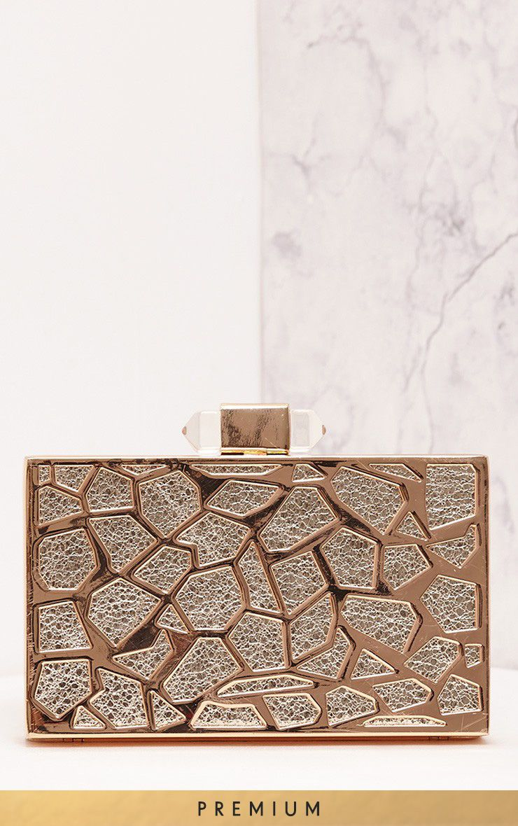 Sharnie Silver & Gold Hard Box Clutch