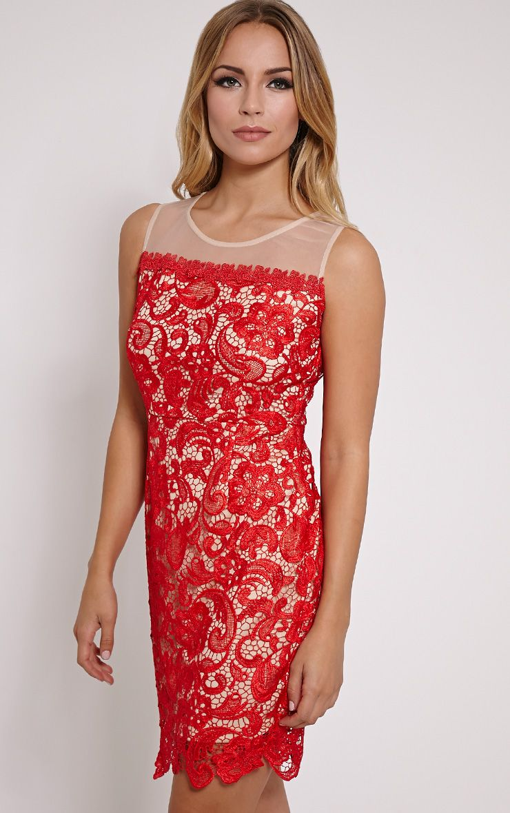 Florine Red Mesh Lace Mini Dress 1