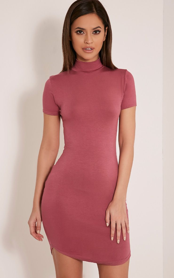 Alby Rose Cap Sleeve Curve Hem High Neck Dress 1