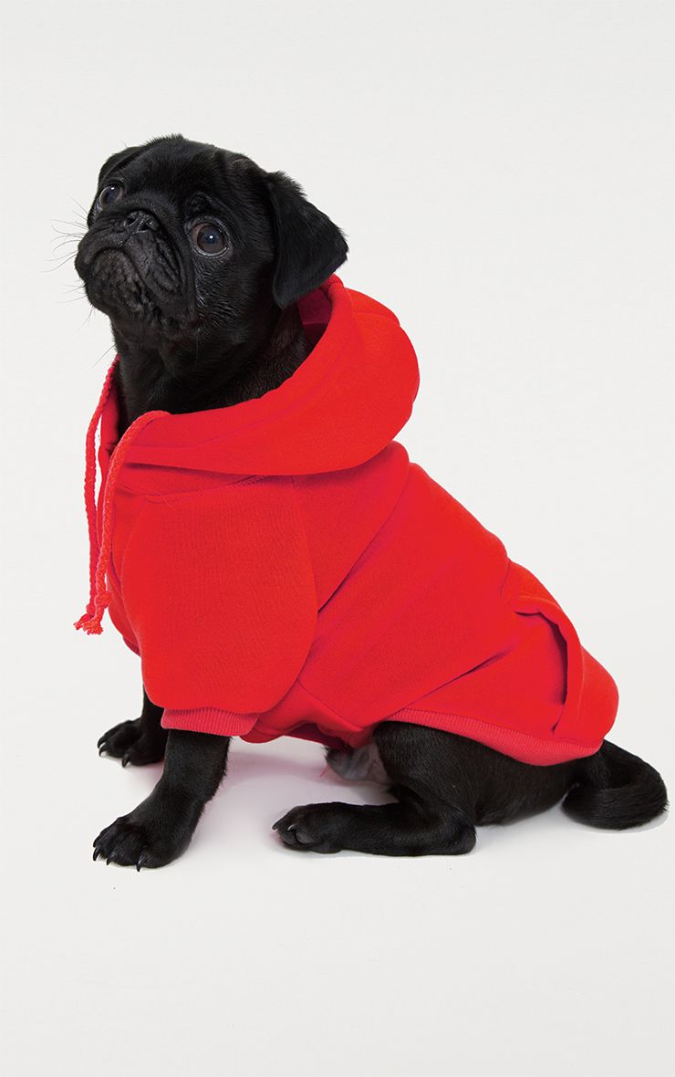 Red Doggy Hoodie