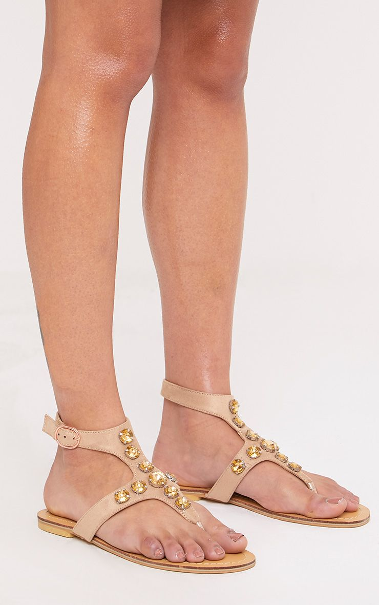 Masie Nude Jewelled Sandals