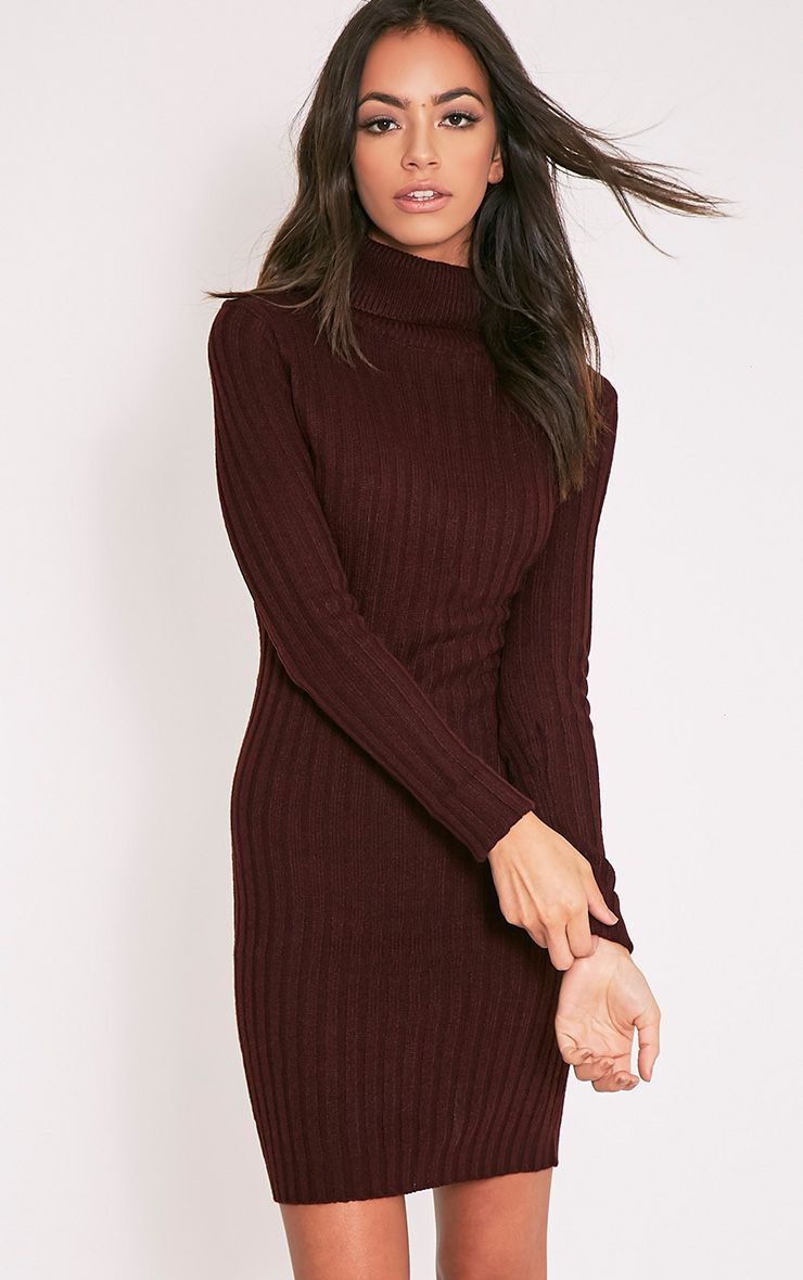 Bianca Berry Ribbed Roll Neck Jumper