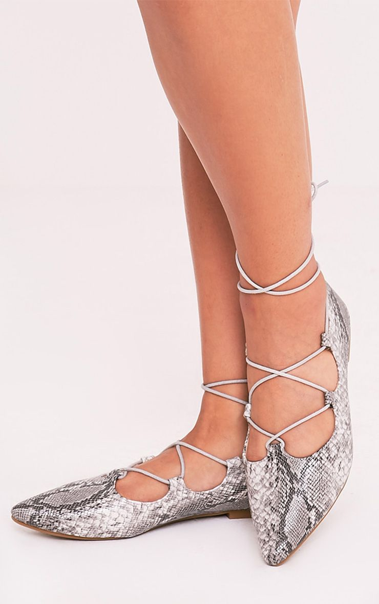 Ezmae Grey Snake Lace Up Pointed Ballet Pumps