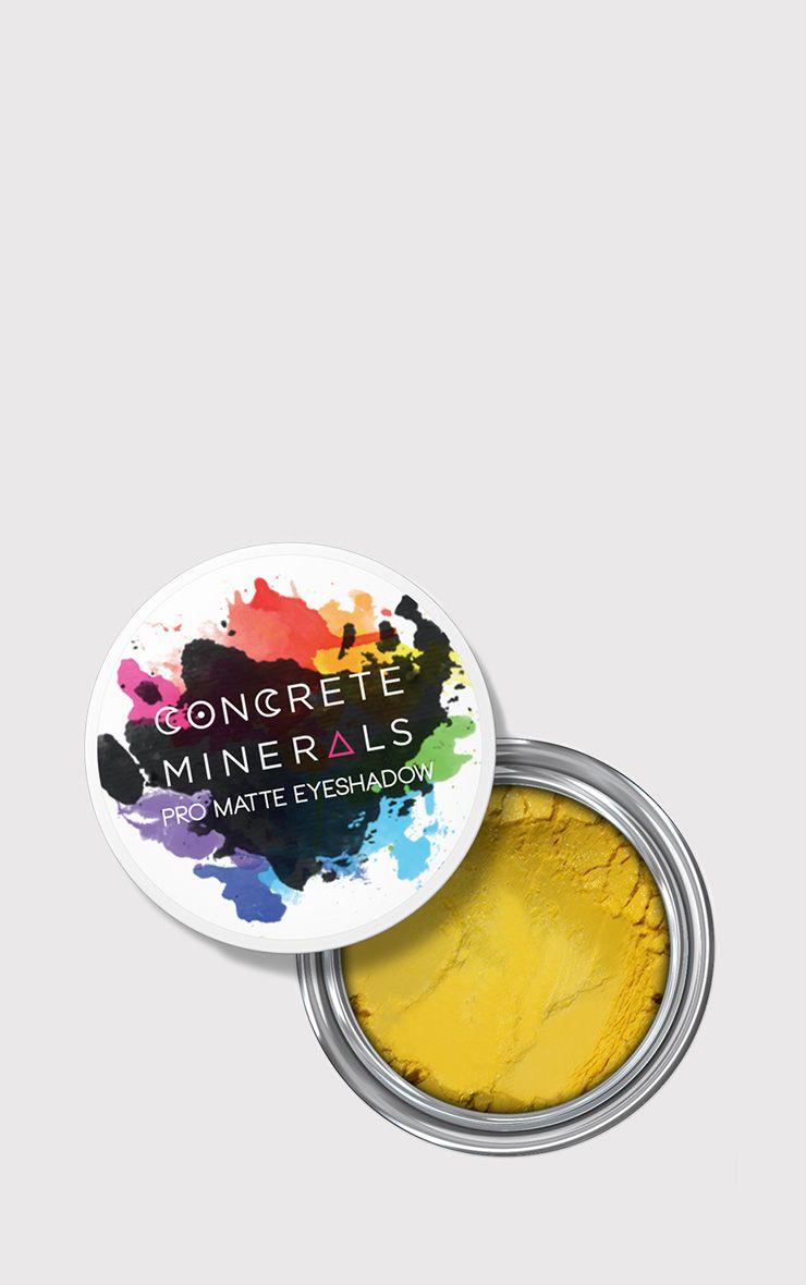 Concrete Minerals Fame Pro Matte Eyeshadow