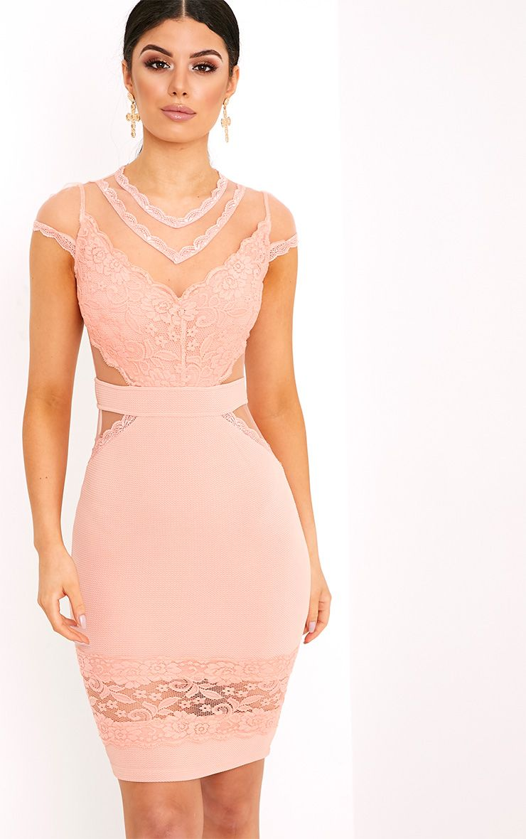 Holli Blush Mesh Insert Midi Dress 1