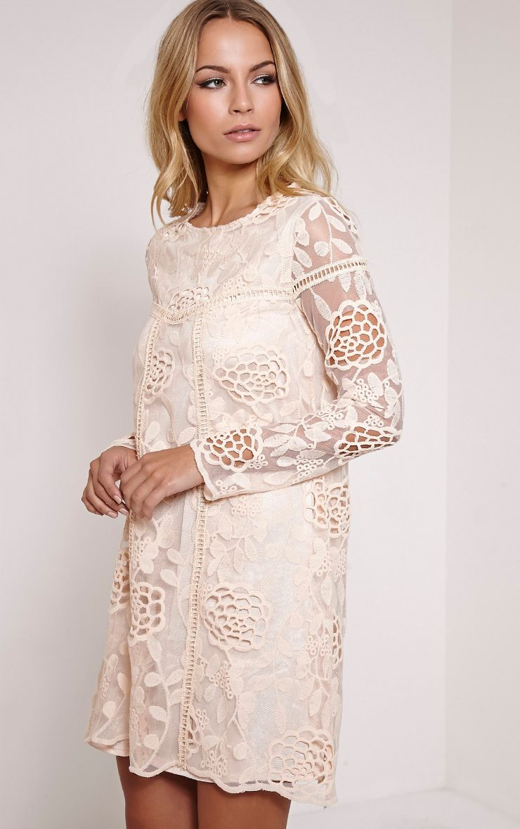 Jay Nude Lace Detail Shift Dress 1