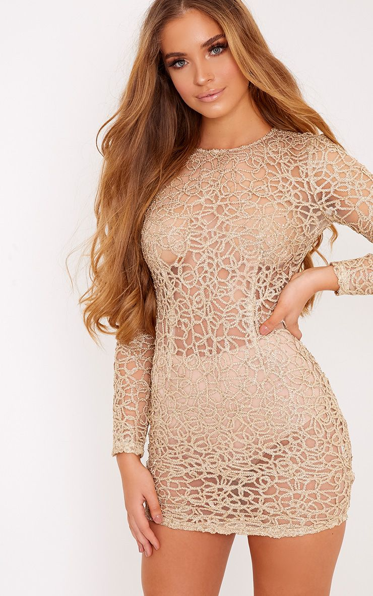 Elise Gold Detail Mesh Bodycon Dress 1