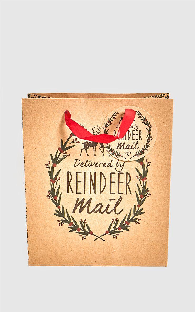 Delivered By Reindeer Mail Gift Bag