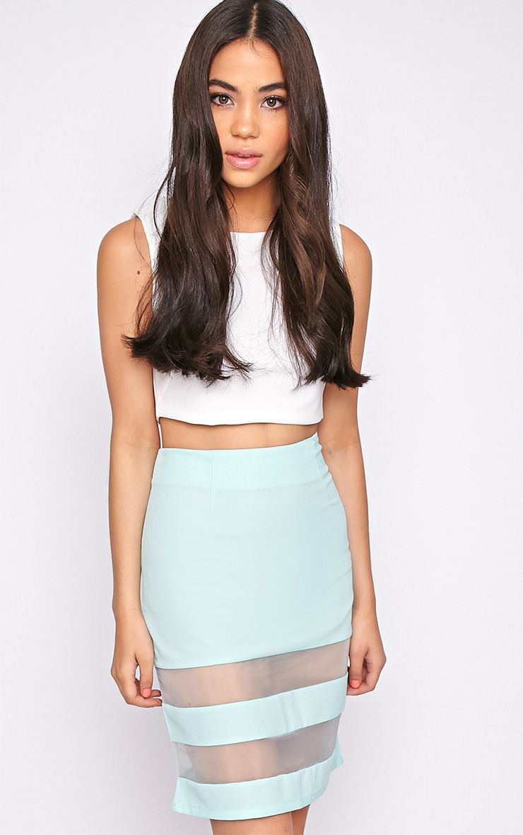 Dakota Mint Mesh Insert Skirt  1