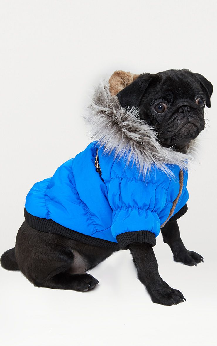 Blue Quilted Faux Fur Hood Doggy Coat