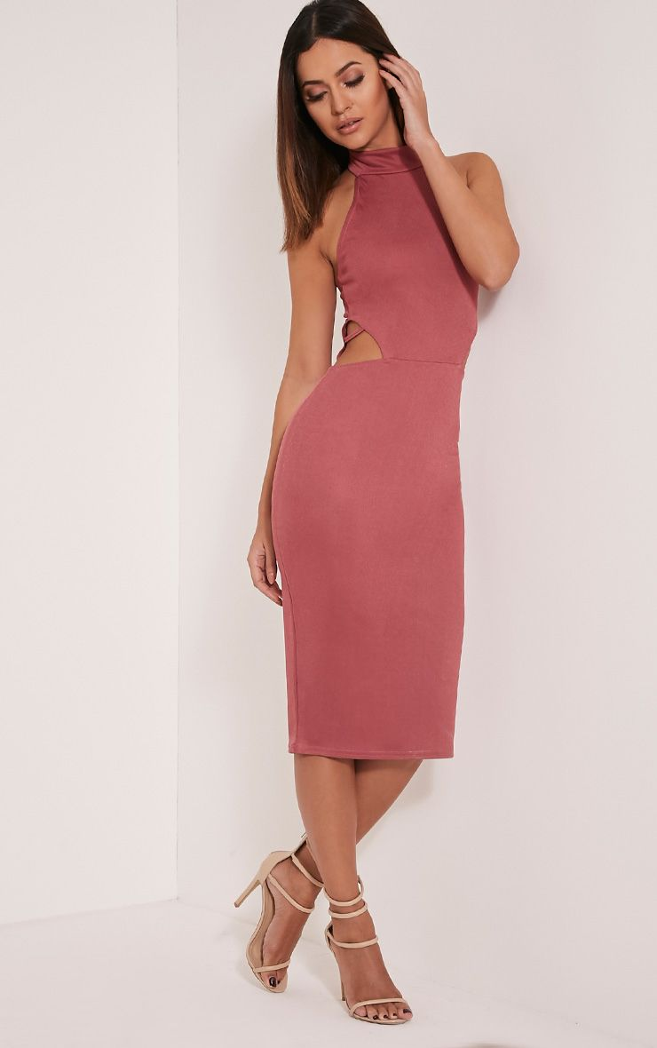 Shae Rose High Neck Backless Bodycon Dress 1