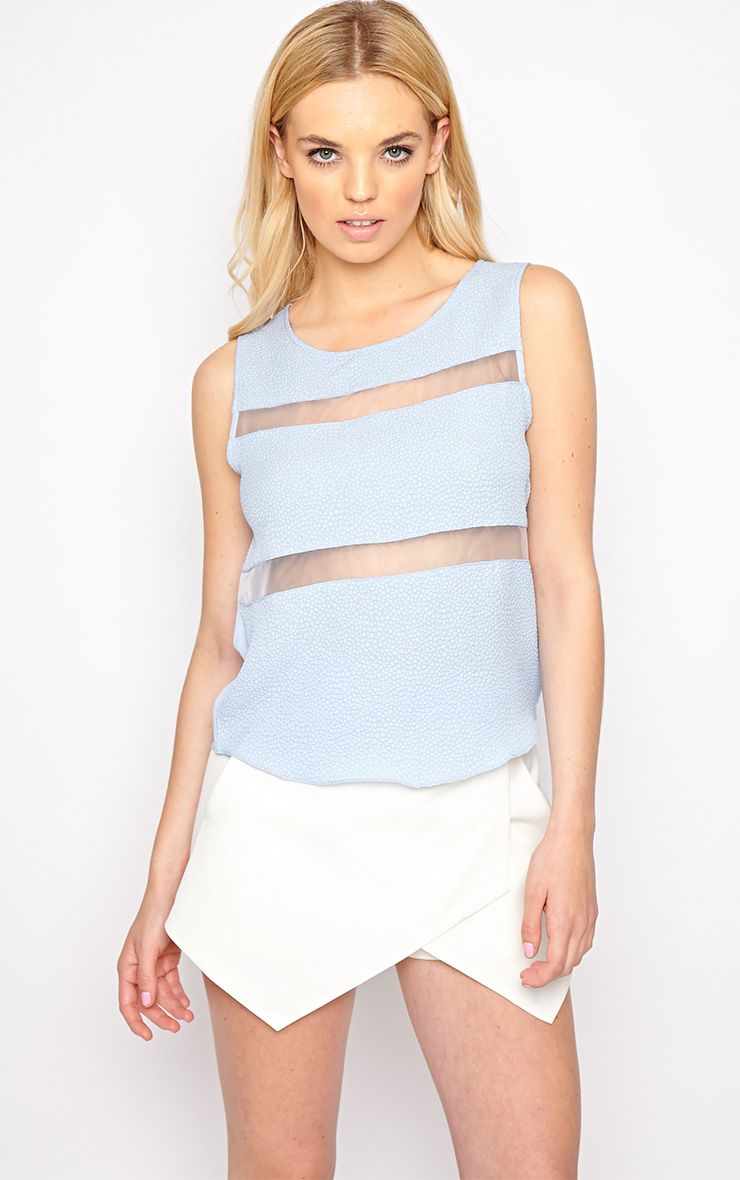Adrianne Blue Mesh Stripe Top  1