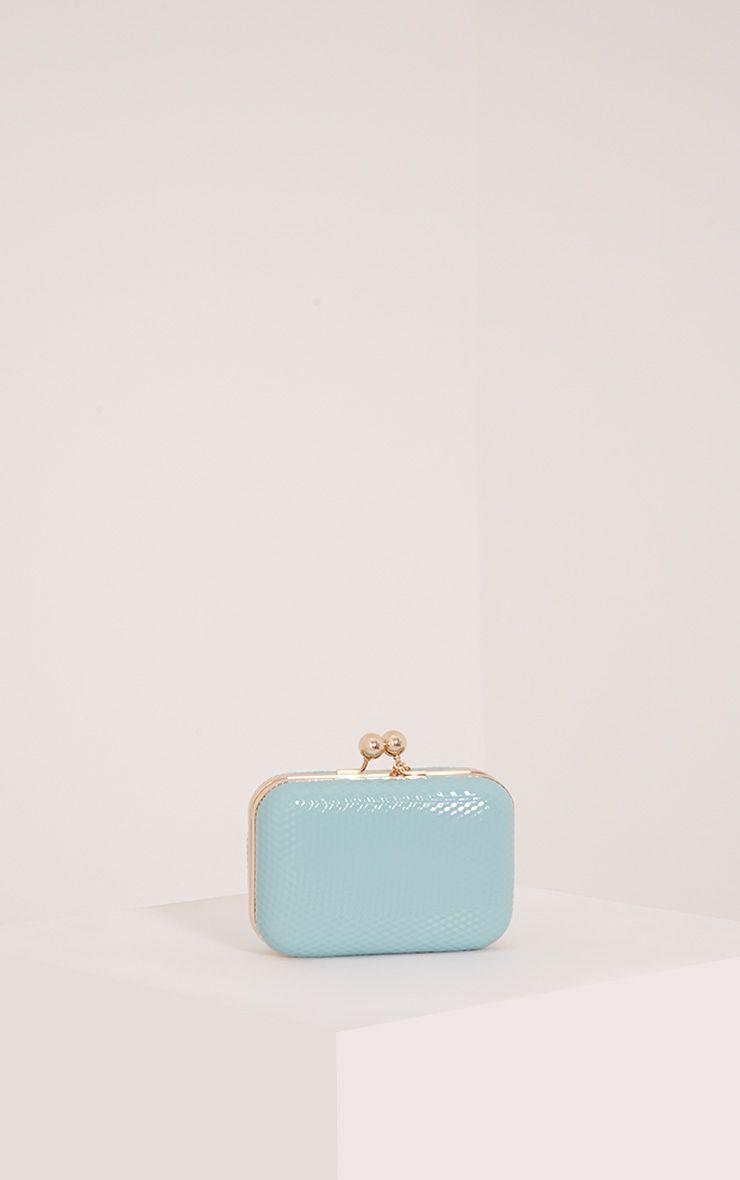 Morgan Mint Box Clutch Bag