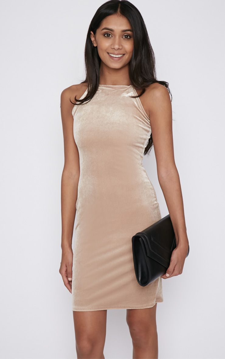 Elektra Beige Velvet Mini Dress 1