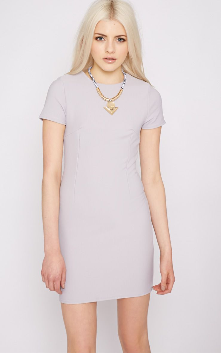 Lillie Grey Ribbed Bodycon Mini Dress 1