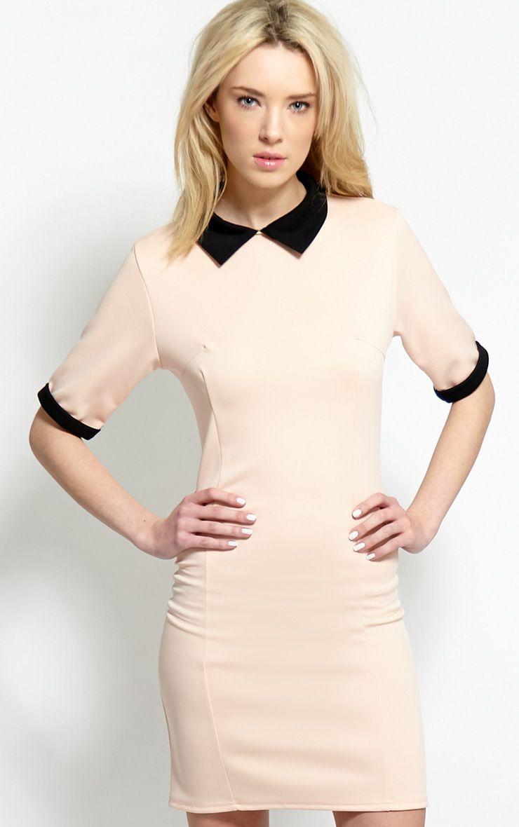 Katrina Blush Pink Collar Dress 1