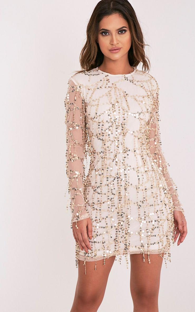 Freyana Rose Gold Sequin Detail Long Sleeve Mini Dress