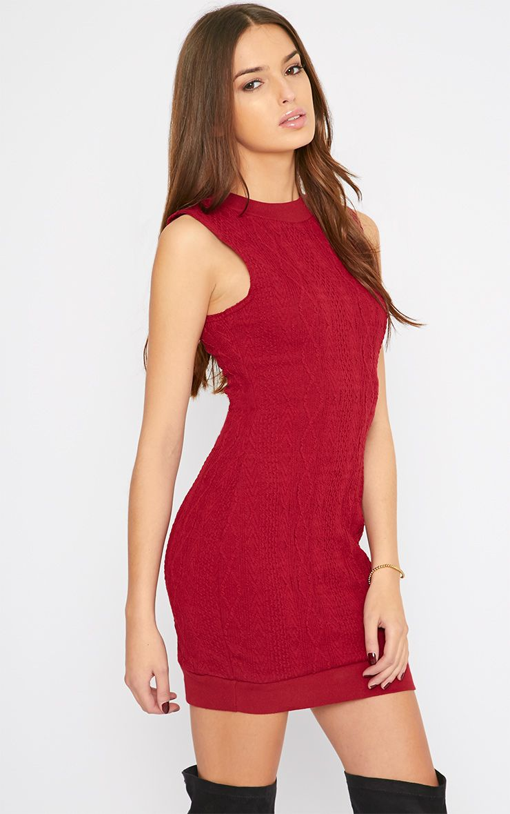 Darcie Red Cable Knit Textured Sleeveless Dress 1